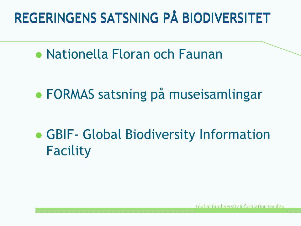 Global Biodiversity Information Facility REGERINGENS SATSNING PÅ BIODIVERSITET l Nationella Floran och Faunan l FORMAS satsning på museisamlingar l GB