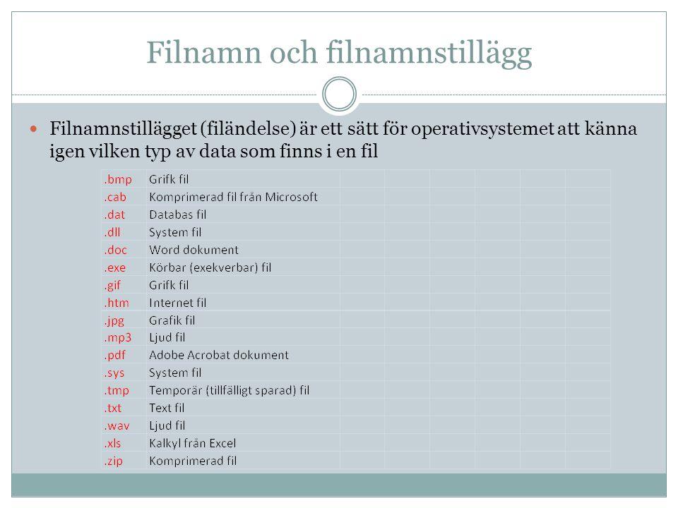 Filnamn och filnamnstillägg Filnamnstillägget (filändelse) är ett sätt för operativsystemet att känna igen vilken typ av data som finns i en fil