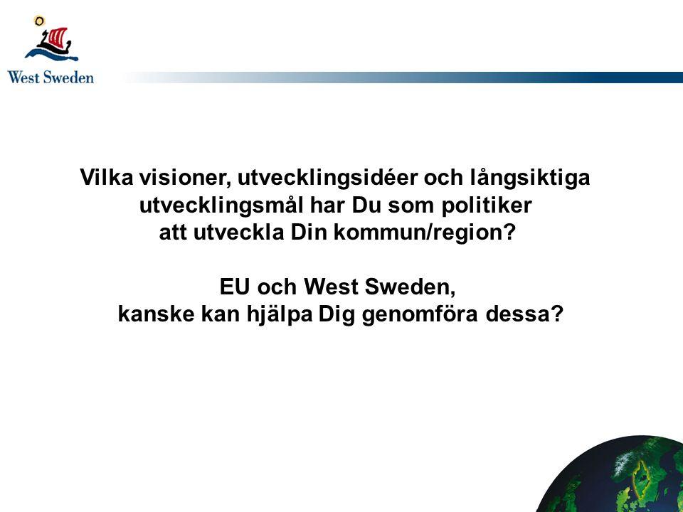 Vilka visioner, utvecklingsidéer och långsiktiga utvecklingsmål har Du som politiker att utveckla Din kommun/region.