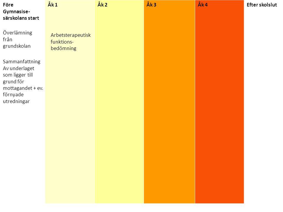 Arbetsterapeutisk bedömning år 1 Bedömning av aktivitetsförmåga.