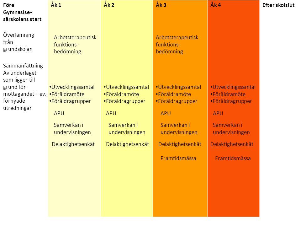 Arbetsterapeutisk funktionsbedömning inför år 4 Syfte: Bedöma elevens förmågor, styrkor och begränsningar.