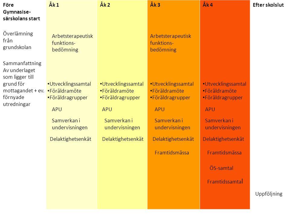 Kunskapsuppdraget Föreläsning med Håkan Nyman om lindrig utvecklingsstörning.