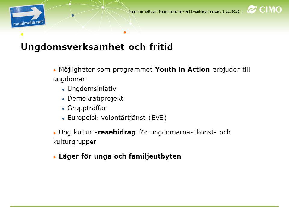| Ungdomsverksamhet och fritid ● Möjligheter som programmet Youth in Action erbjuder till ungdomar ● Ungdomsiniativ ● Demokratiprojekt ● Gruppträffar