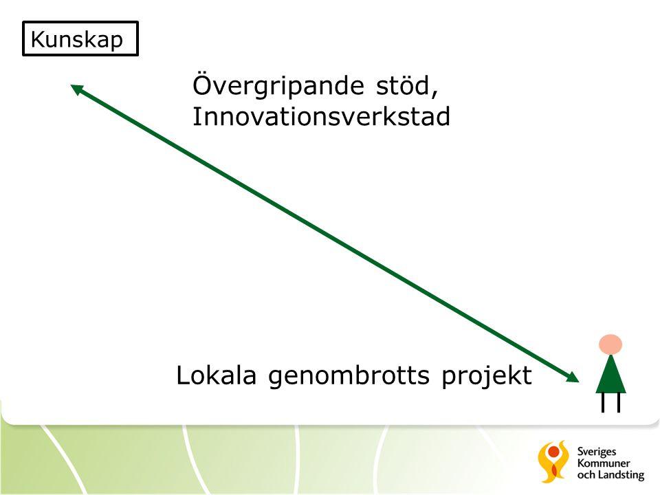 Kunskap Övergripande stöd, Innovationsverkstad Lokala genombrotts projekt