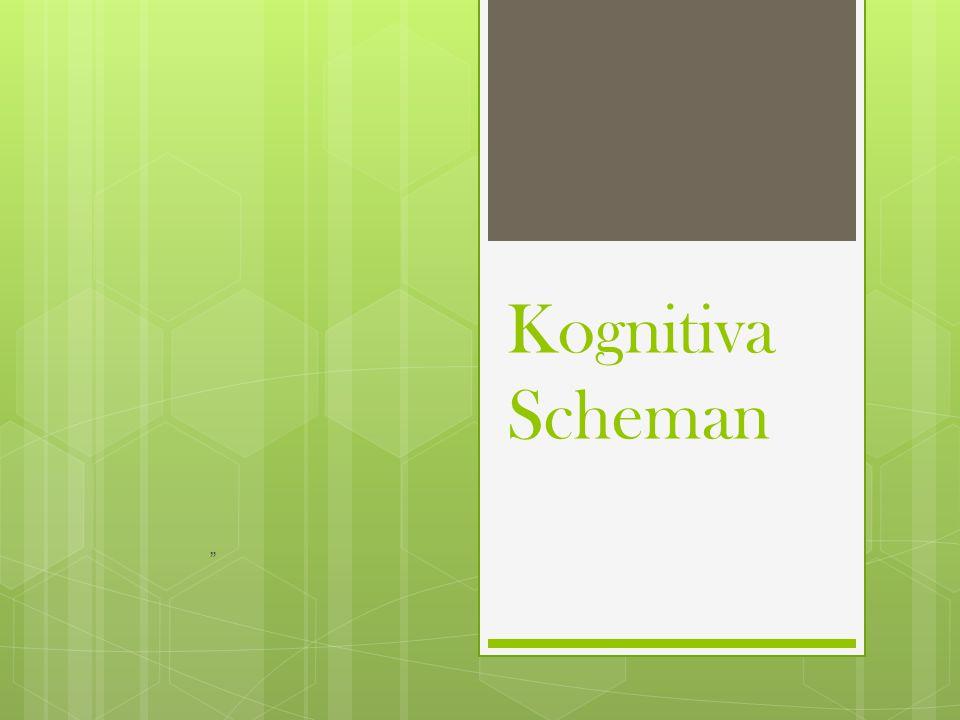 """Kognitiva Scheman """""""