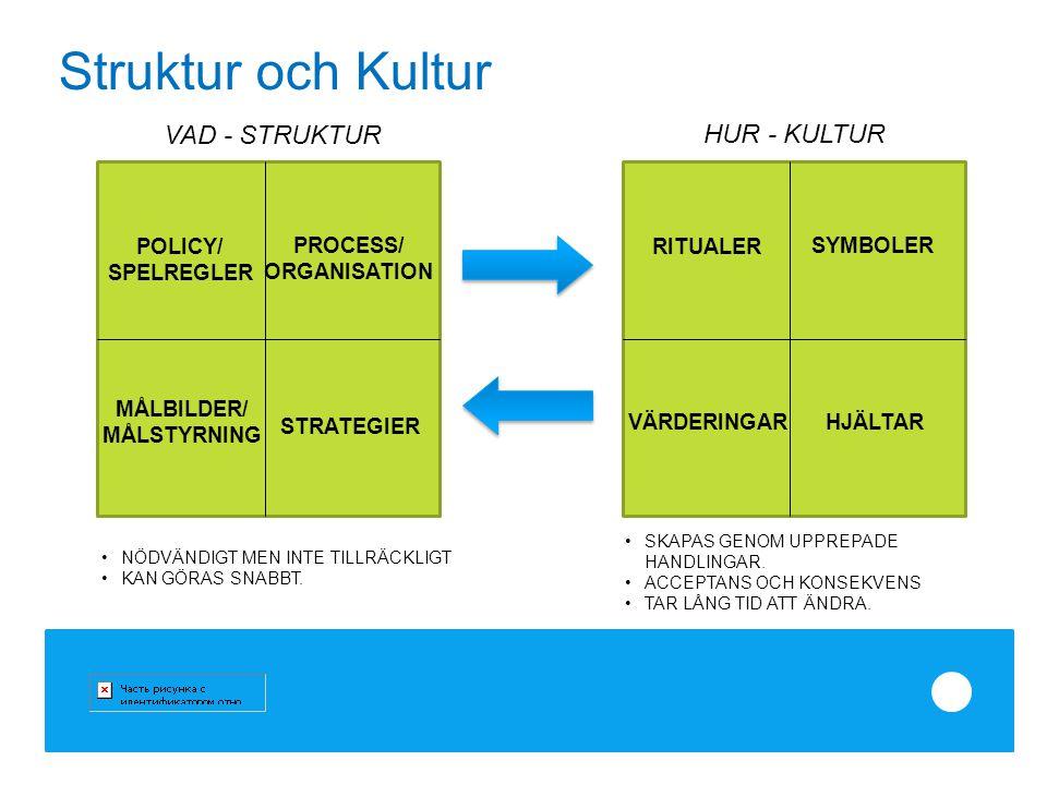VAD - STRUKTUR HUR - KULTUR PROCESS/ ORGANISATION POLICY/ SPELREGLER MÅLBILDER/ MÅLSTYRNING STRATEGIER RITUALER SYMBOLER VÄRDERINGAR HJÄLTAR SKAPAS GE