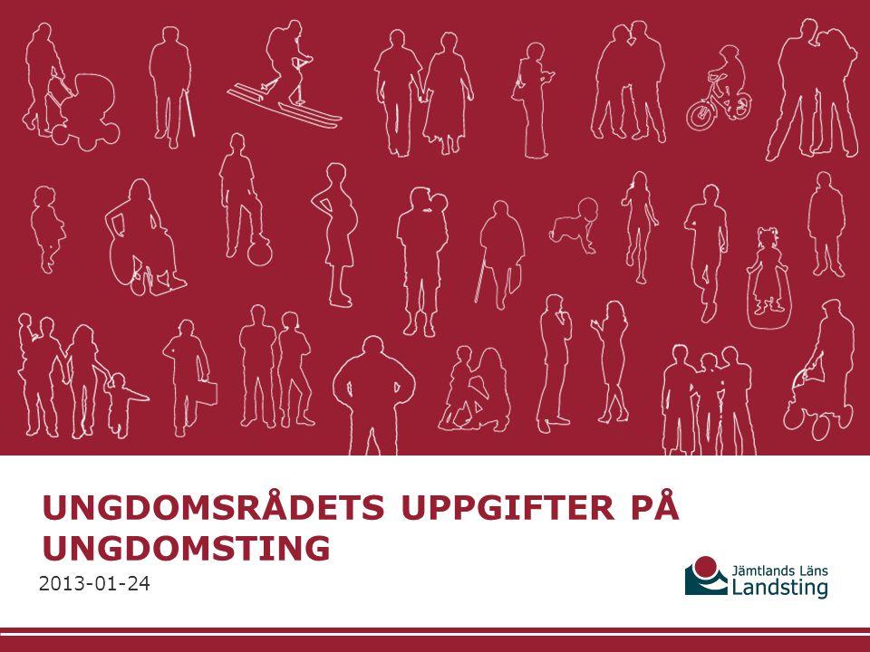 UNGDOMSRÅDETS UPPGIFTER PÅ UNGDOMSTING 2013-01-24