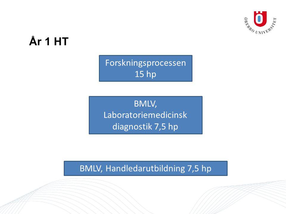 ÅR 1 HT/VT HT BMLV, Forskningsprocessen 15 hp (halvfart) BMLV, laboratoriemedicinsk diagnostik – inriktad 7,5 hp (halvfart) BMLV B, Handledarutbilning 7,5 hp (kvartsfart) VT BMLV, Tillämpad laboratoriemetodik 15 hp *BMLV, Examensarbete 15 hp *BMLV, Applicerad mikrobiologi och immunologi 15 hp *Medicin, Patofysiologi på cellulär nivå 15 hp * Medicin, Humangenetik med tillämpad bioinformatik 15 hp *BMLV, Tumörbiologi 15 hp *BMLV, Laboratoriemedicinska metoder 15 hp *övriga valbara kurser inom ORU ÅR 2 HT/VT HT BMLV, Forskningsöversikt och design 15 hp *Medicin, Medicinsk kemi + Klinisk kemi 15 hp.