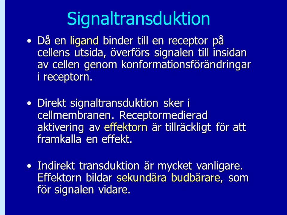 Signaltransduktion Då en ligand binder till en receptor på cellens utsida, överförs signalen till insidan av cellen genom konformationsförändringar i