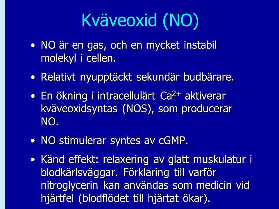 Kväveoxid (NO) NO är en gas, och en mycket instabil molekyl i cellen.NO är en gas, och en mycket instabil molekyl i cellen. Relativt nyupptäckt sekund
