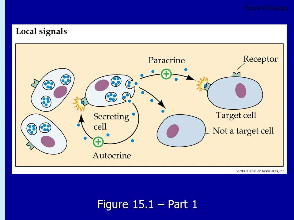 15.1 – Part 1 Figure 15.1 – Part 1 figure 15-01a.jpg