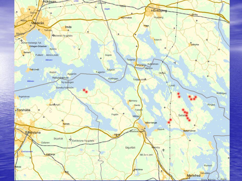 2011-04-15 Södermanlands Energiförening Tord Dahlen15