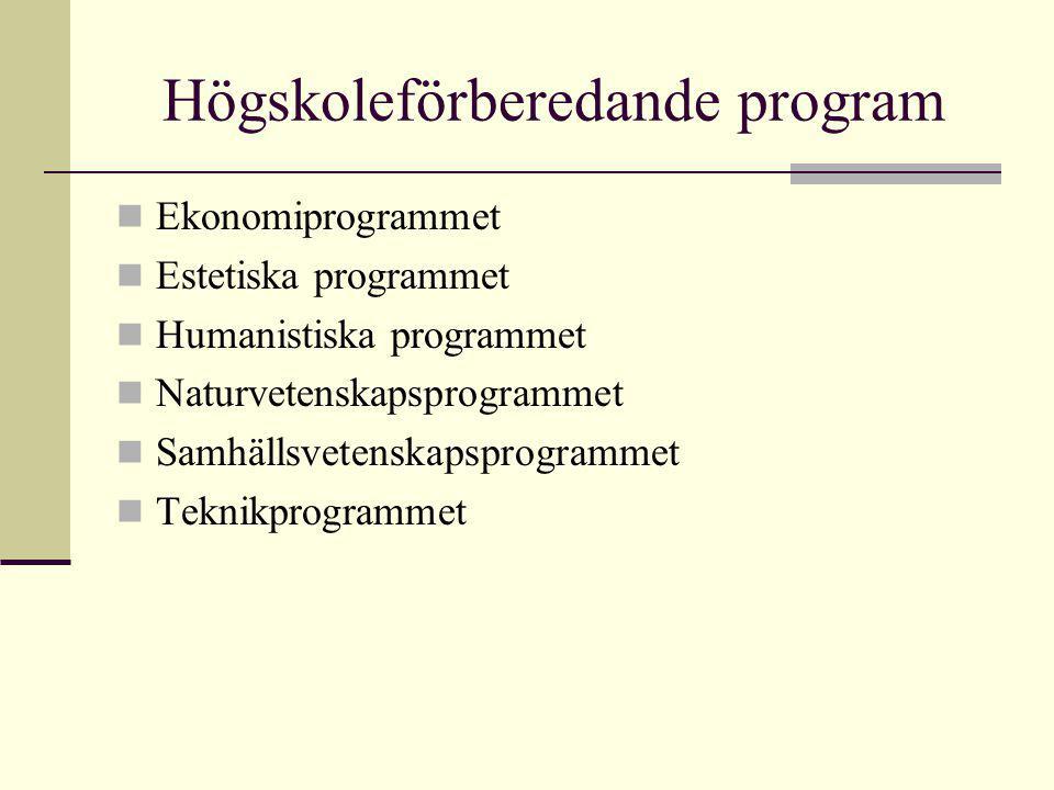 Högskoleförberedande program Ekonomiprogrammet Estetiska programmet Humanistiska programmet Naturvetenskapsprogrammet Samhällsvetenskapsprogrammet Teknikprogrammet