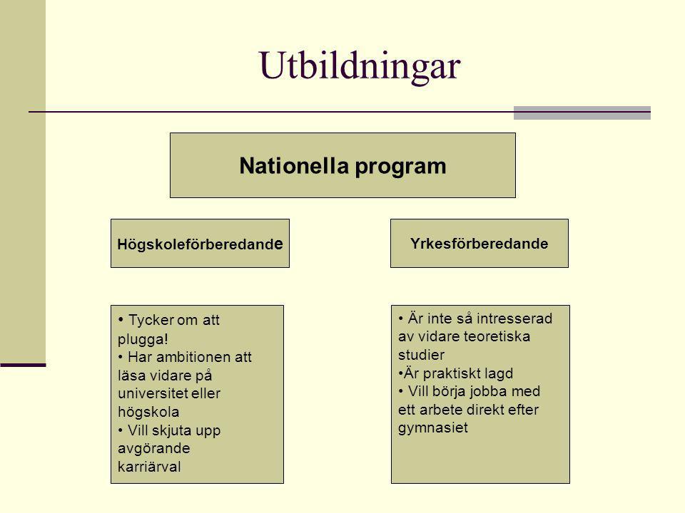 Utbildningar Nationella program Högskoleförberedand e Yrkesförberedande Tycker om att plugga.
