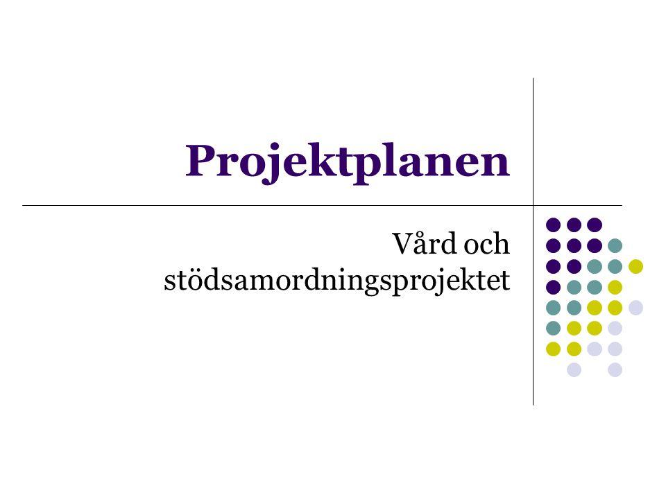 Projektplanen Vård och stödsamordningsprojektet