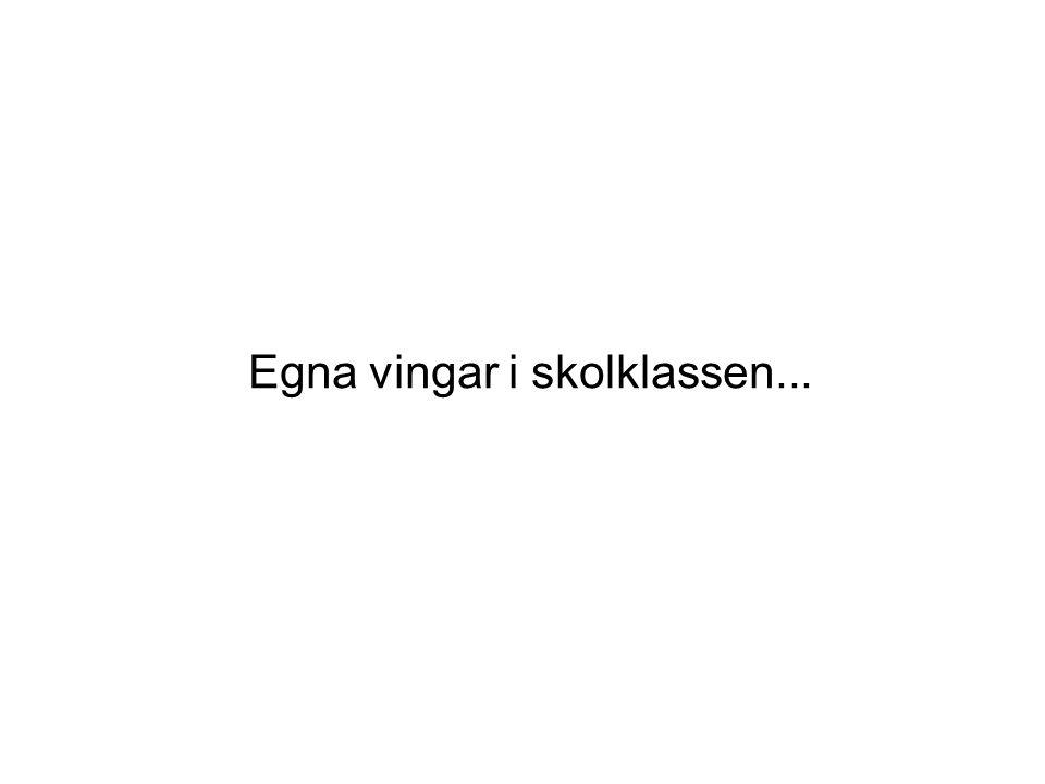 Skolstöd Sverige AB Bästa möjliga skolgång för varje elev Ensam med hörselnedsättning Ingen annan har ju hörapparat...