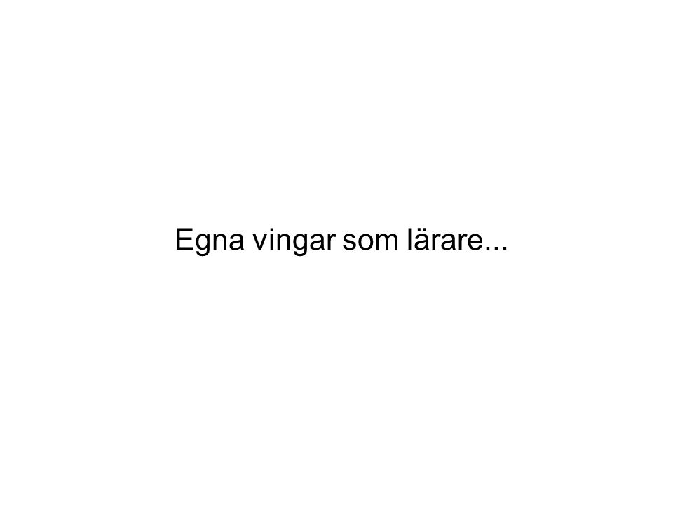 Skolstöd Sverige AB Bästa möjliga skolgång för varje elev Ensam som lärare...
