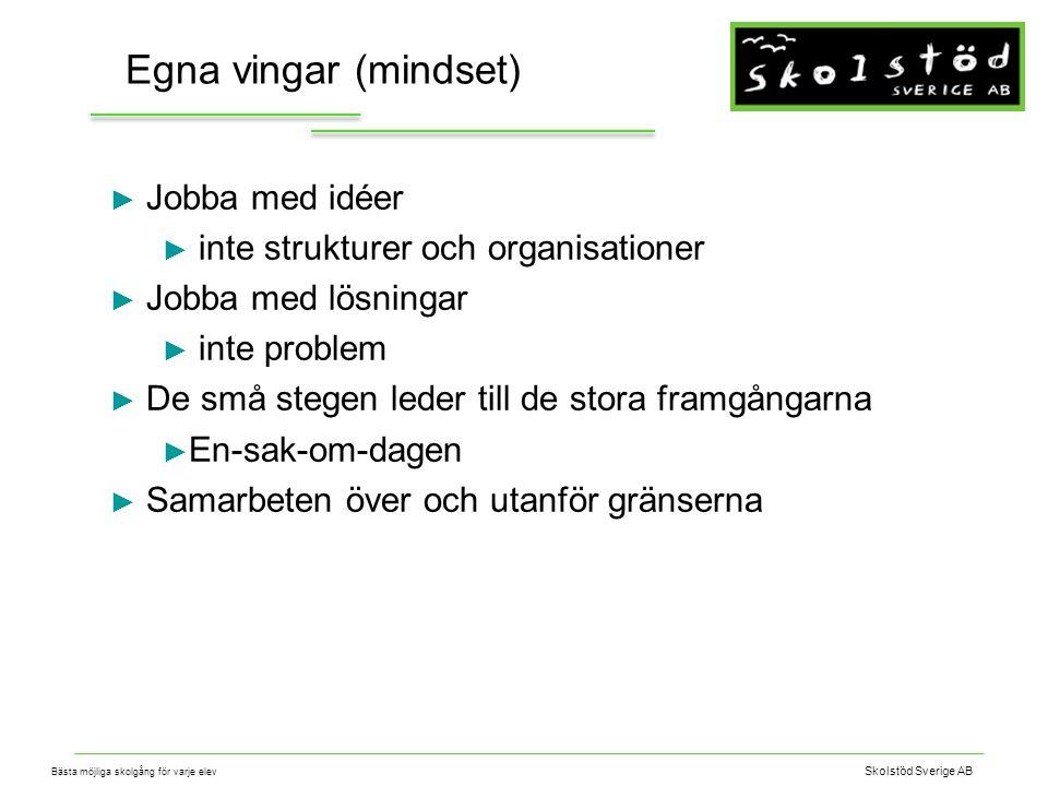 Skolstöd Sverige AB Bästa möjliga skolgång för varje elev En idé är som en blomma Samarbete Nyfikenhet TidResurser