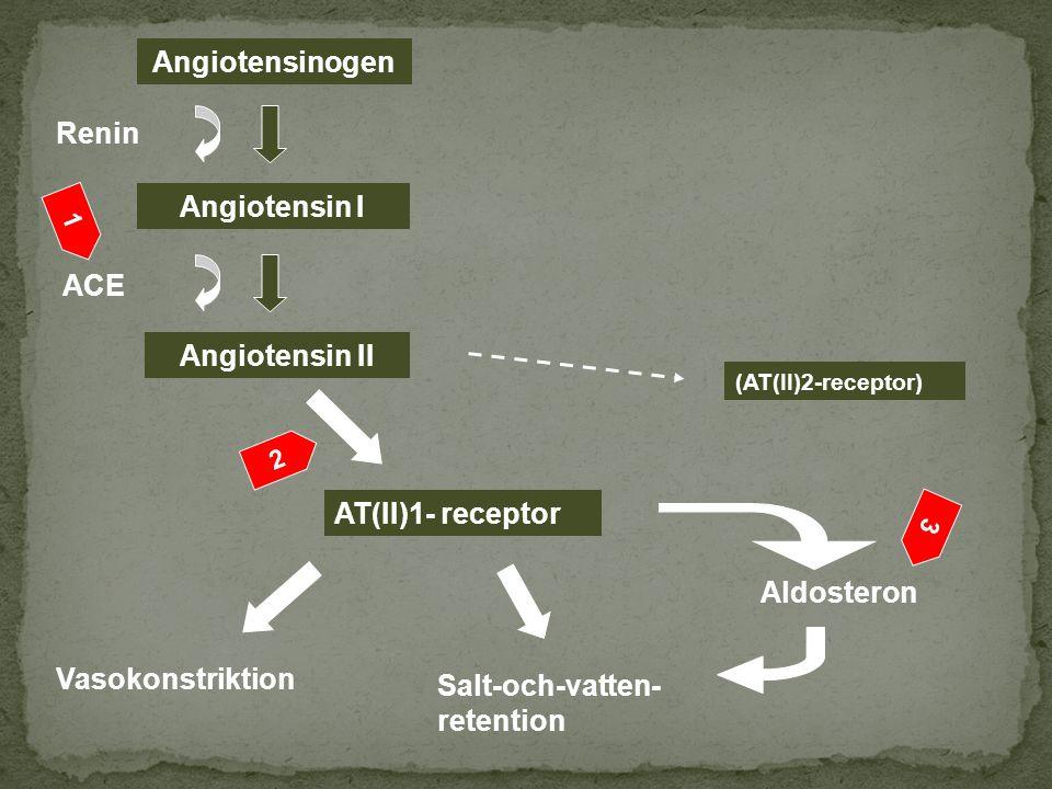 Angiotensinogen Angiotensin I Angiotensin II AT(II)1- receptor (AT(II)2-receptor) Renin ACE Salt-och-vatten- retention Aldosteron Vasokonstriktion 2 1 3