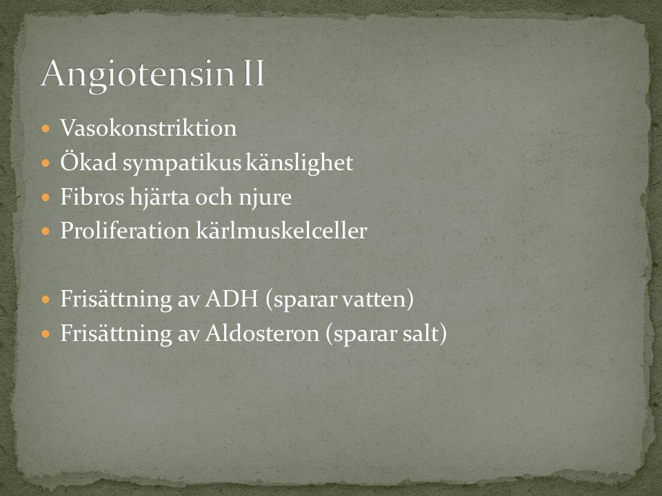 Vasokonstriktion Ökad sympatikus känslighet Fibros hjärta och njure Proliferation kärlmuskelceller Frisättning av ADH (sparar vatten) Frisättning av Aldosteron (sparar salt)