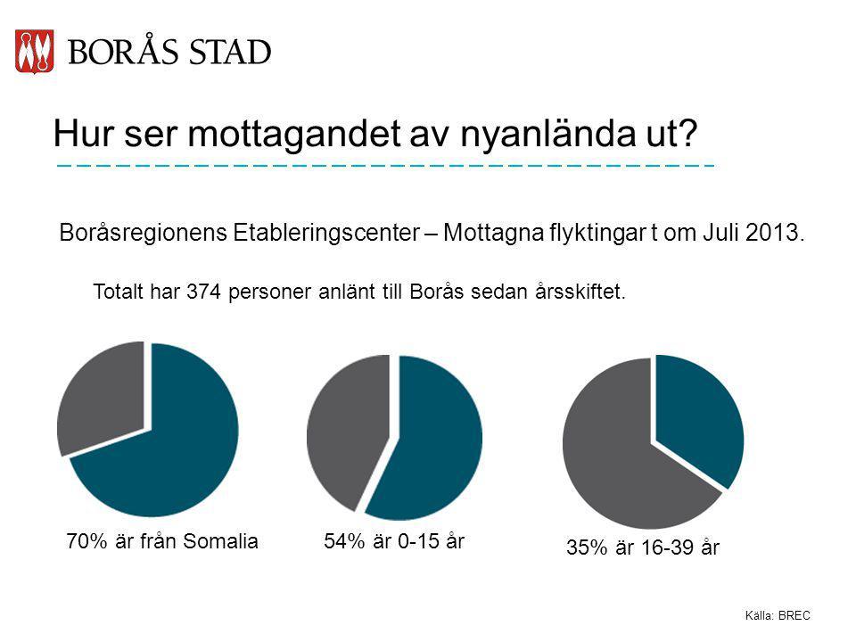 Hur ser mottagandet av nyanlända ut? Boråsregionens Etableringscenter – Mottagna flyktingar t om Juli 2013. Källa: BREC Totalt har 374 personer anlänt