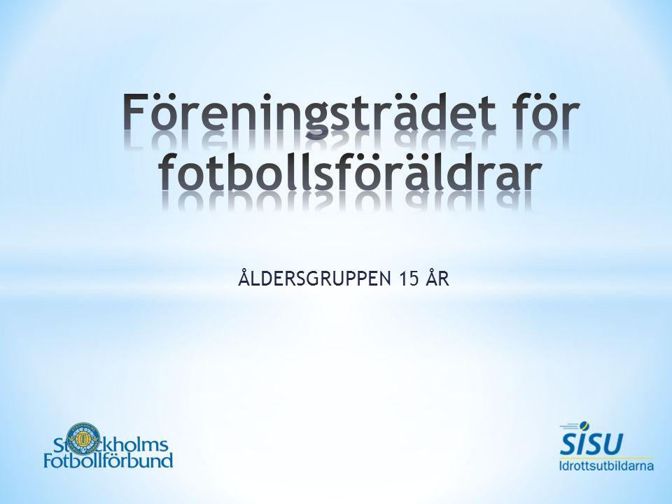 ÅLDERSGRUPPEN 15 ÅR