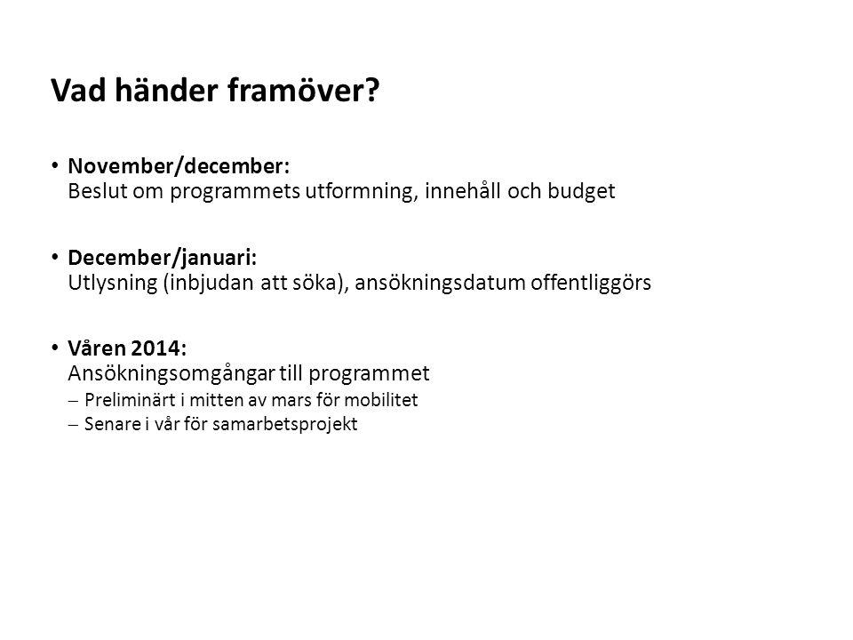Sv November/december: Beslut om programmets utformning, innehåll och budget December/januari: Utlysning (inbjudan att söka), ansökningsdatum offentlig