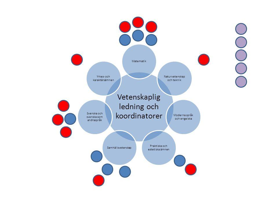 Vetenskaplig ledning och koordinatorer Matematik Naturvetenskap och teknik Moderna språk och engelska Praktiska och estetiska ämnen Samhällsvetenskap Svenska och svenska som andraspråk Yrkes- och karaktärsämnen