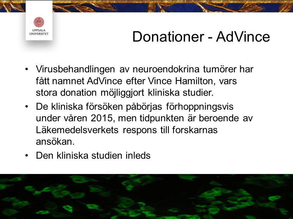 Donationer - AdVince Virusbehandlingen av neuroendokrina tumörer har fått namnet AdVince efter Vince Hamilton, vars stora donation möjliggjort klinisk