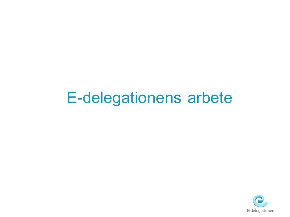 E-delegationens arbete