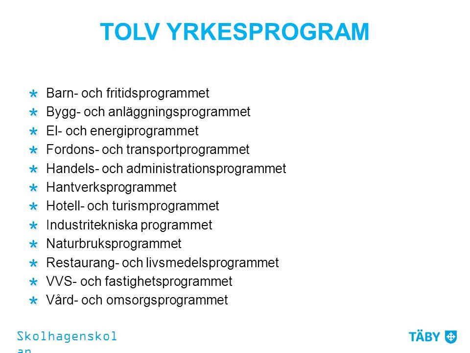 TOLV YRKESPROGRAM Barn- och fritidsprogrammet Bygg- och anläggningsprogrammet El- och energiprogrammet Fordons- och transportprogrammet Handels- och a
