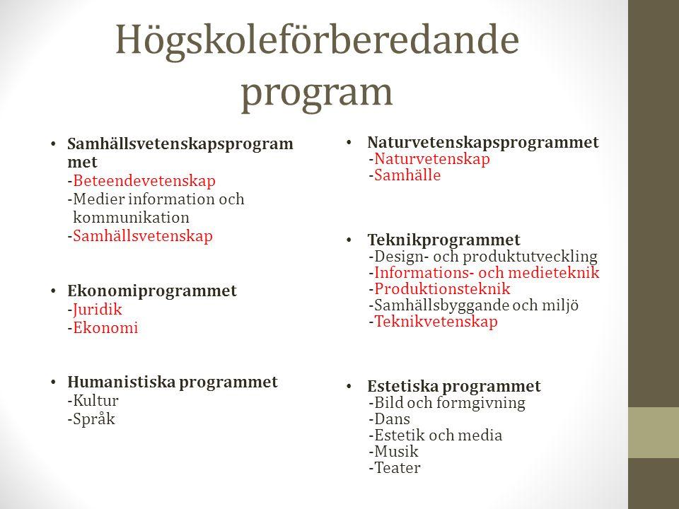 Högskoleförberedande program Samhällsvetenskapsprogram met -Beteendevetenskap -Medier information och kommunikation -Samhällsvetenskap Ekonomiprogramm