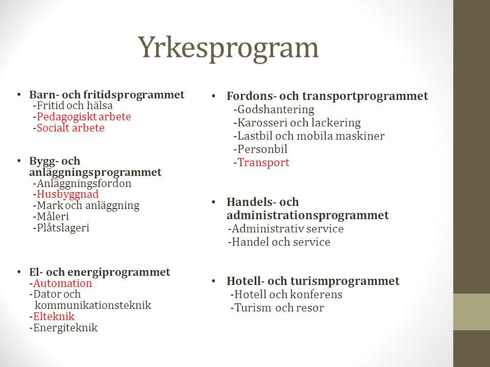 Yrkesprogram Barn- och fritidsprogrammet -Fritid och hälsa -Pedagogiskt arbete -Socialt arbete Bygg- och anläggningsprogrammet -Anläggningsfordon -Hus