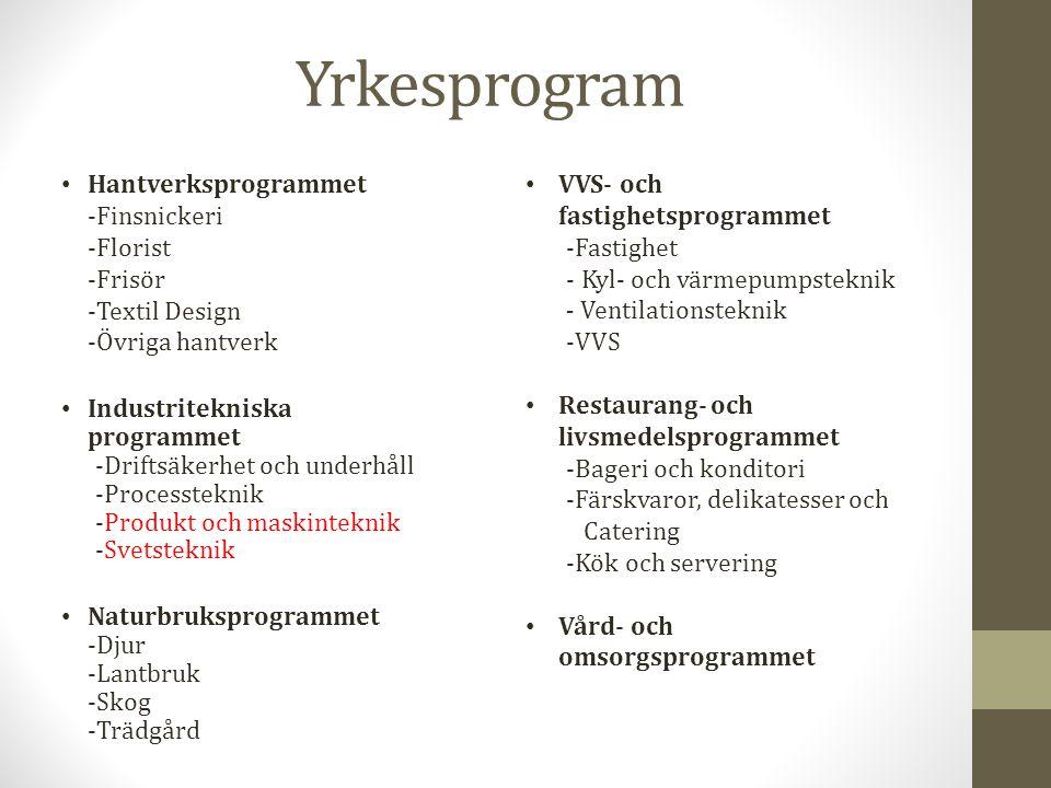 Yrkesprogram Hantverksprogrammet -Finsnickeri -Florist -Frisör -Textil Design -Övriga hantverk Industritekniska programmet -Driftsäkerhet och underhåll -Processteknik -Produkt och maskinteknik -Svetsteknik Naturbruksprogrammet -Djur -Lantbruk -Skog -Trädgård VVS- och fastighetsprogrammet -Fastighet - Kyl- och värmepumpsteknik - Ventilationsteknik -VVS Restaurang- och livsmedelsprogrammet -Bageri och konditori -Färskvaror, delikatesser och Catering -Kök och servering Vård- och omsorgsprogrammet
