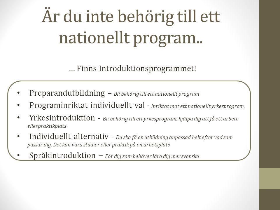Är du inte behörig till ett nationellt program.. … Finns Introduktionsprogrammet! Preparandutbildning – Bli behörig till ett nationellt program Progra