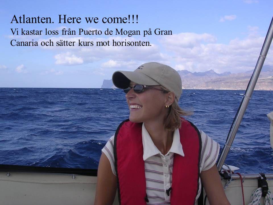 Atlanten. Here we come!!! Vi kastar loss från Puerto de Mogan på Gran Canaria och sätter kurs mot horisonten.