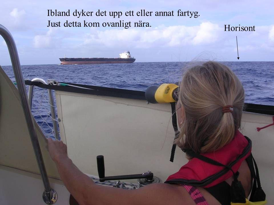 Ibland dyker det upp ett eller annat fartyg. Just detta kom ovanligt nära. Horisont
