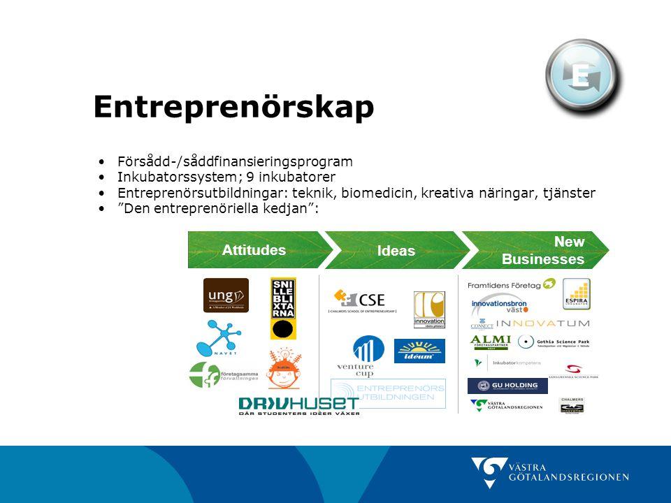 Entreprenörskap E Försådd-/såddfinansieringsprogram Inkubatorssystem; 9 inkubatorer Entreprenörsutbildningar: teknik, biomedicin, kreativa näringar, t
