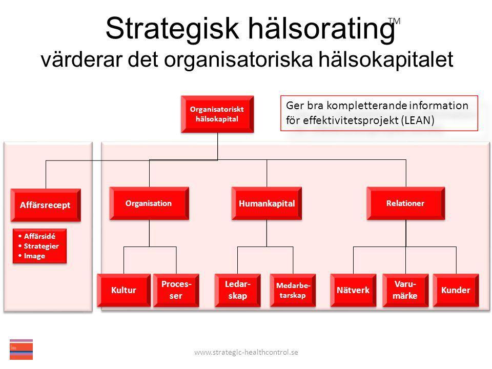 Organisatoriskt hälsokapital Organisatoriskt hälsokapital Affärsrecept Humankapital Organisation Nätverk Varu- märke Varu- märke Kunder Proces- ser Pr