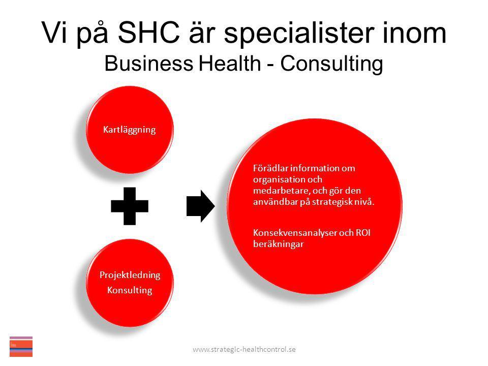 Framgångsfaktorer För att realisera effekter och nå resultat av insatser som stärker humankapitalet är det viktigt med; Timing Förankring på högsta ledningsnivå Ekonomiska bevis (incitament) www.strategic-healthcontrol.se