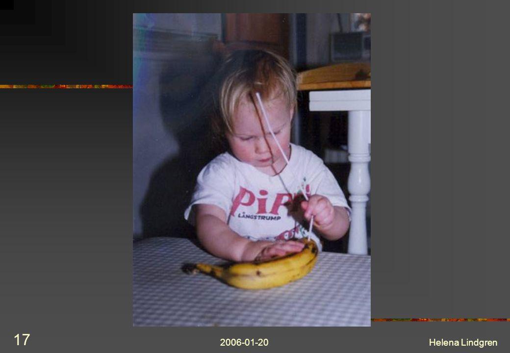 2006-01-20Helena Lindgren 17