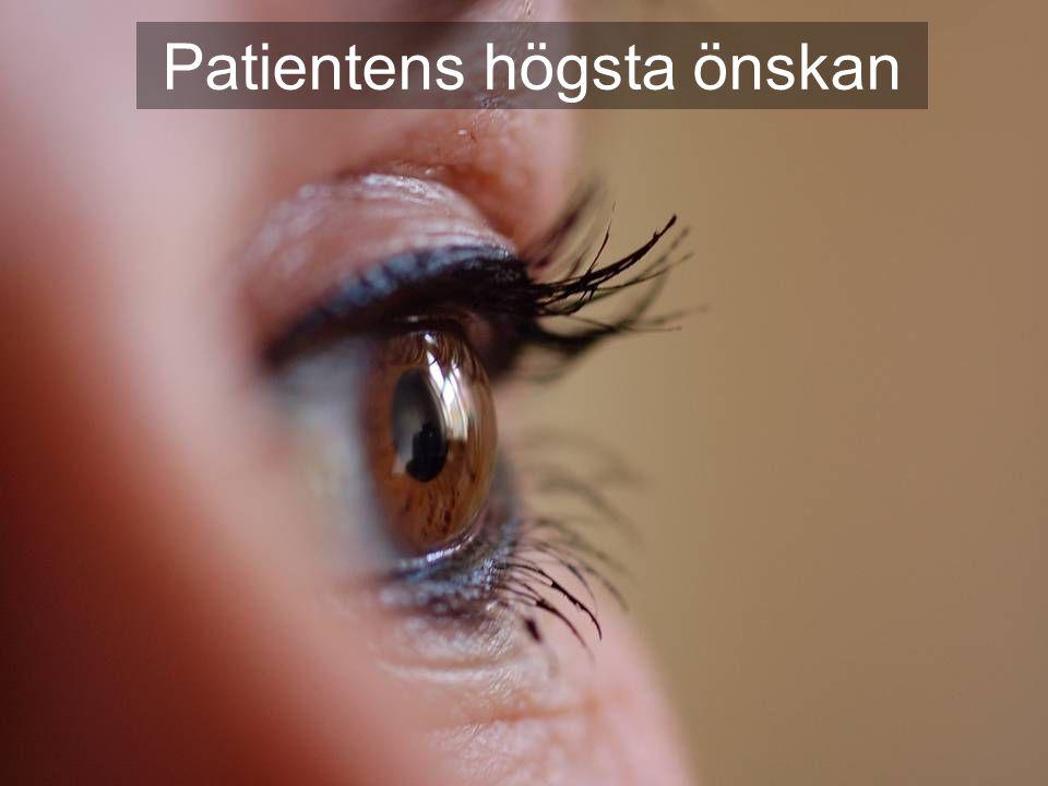 2007-01-30 Kaj Essinger 3:e Patientsäkerhetskonferensen Patientens högsta önskan