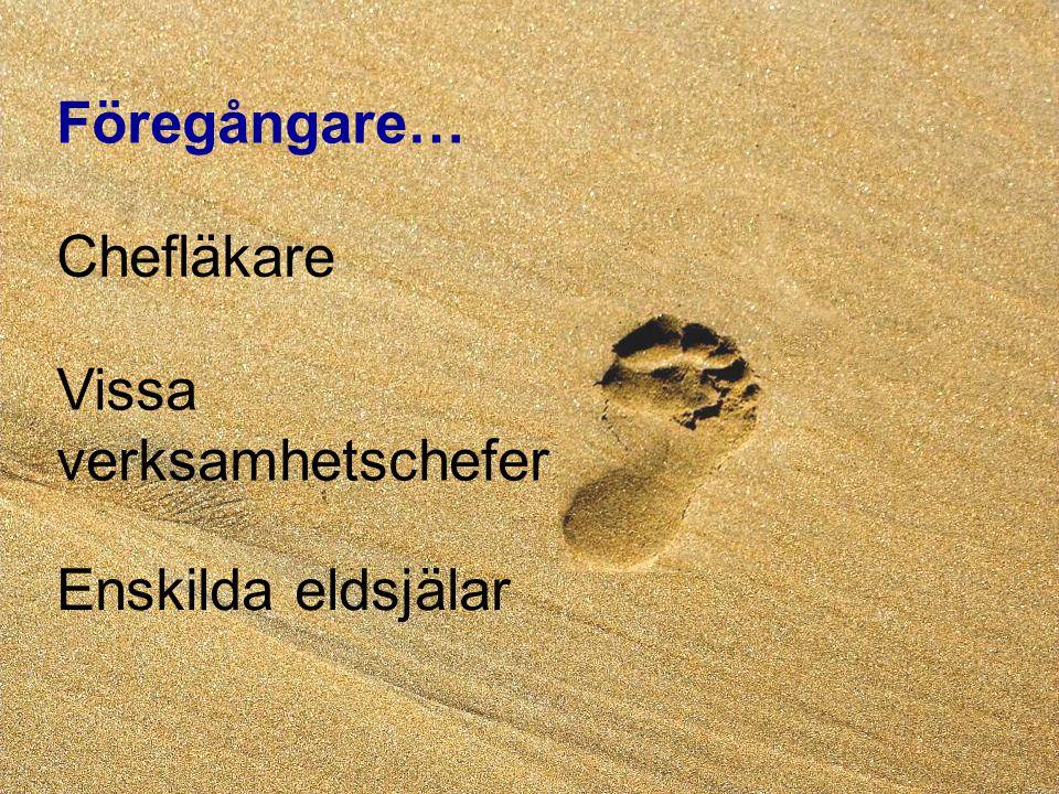 2007-01-30 Kaj Essinger 3:e Patientsäkerhetskonferensen Föregångare… Enskilda eldsjälar Chefläkare Vissa verksamhetschefer