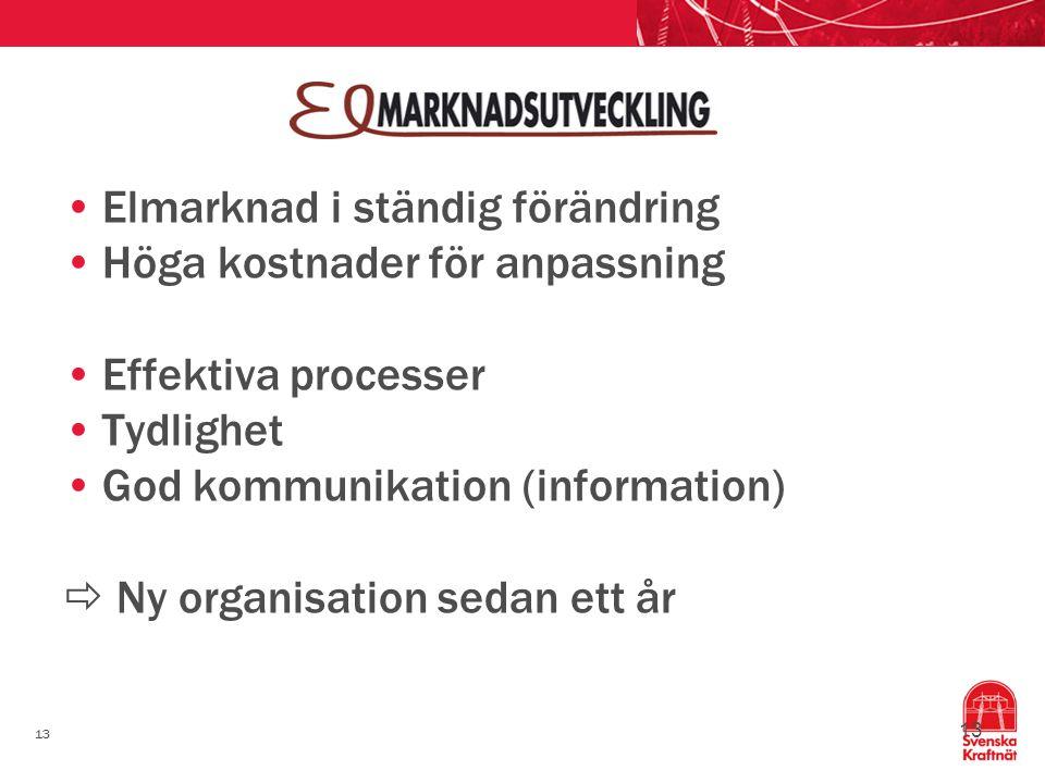 13 Elmarknad i ständig förändring Höga kostnader för anpassning Effektiva processer Tydlighet God kommunikation (information)  Ny organisation sedan ett år 13