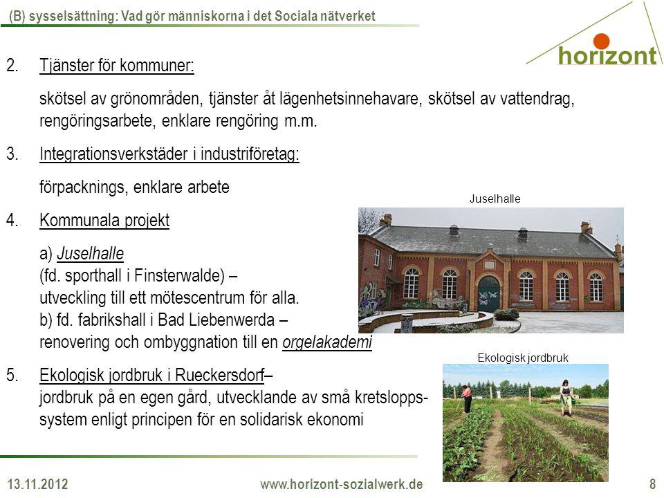 13.11.2012 www.horizont-sozialwerk.de 8 (B) sysselsättning: Vad gör människorna i det Sociala nätverket 2.Tjänster för kommuner: skötsel av grönområde