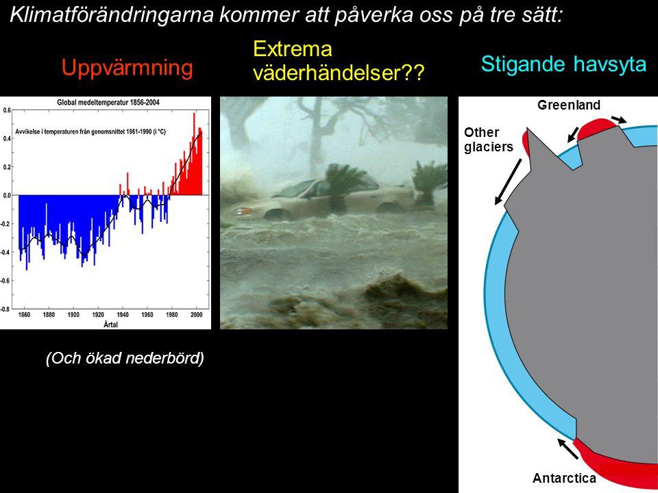2014-12-12 Johan Kleman, Professor, Instutitionen för naturgeografi och kvartärgeologi 12 Greenland Other glaciers Antarctica Klimatförändringarna kom