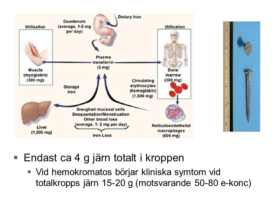  Endast ca 4 g järn totalt i kroppen  Vid hemokromatos börjar kliniska symtom vid totalkropps järn 15-20 g (motsvarande 50-80 e-konc)