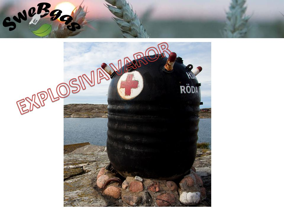 Biogasutbildning 2011