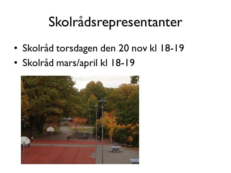 Skolrådsrepresentanter Skolråd torsdagen den 20 nov kl 18-19 Skolråd mars/april kl 18-19