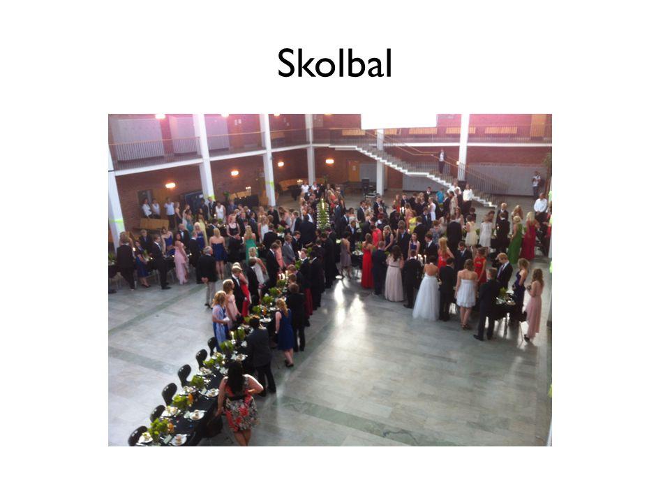 Skolbal